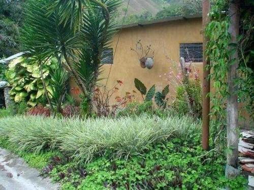Casa vacacional jard n bamb caripe hoteles y posadas en for Ver jardines