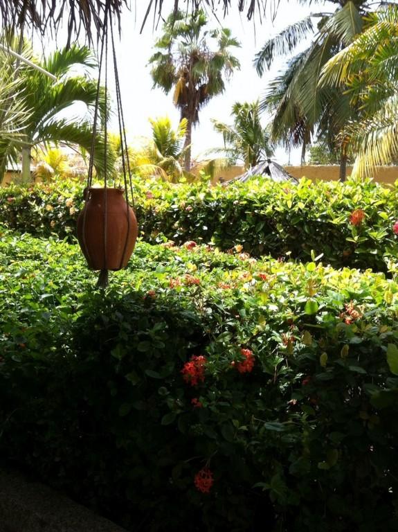 Hotel Residencia Villa Marbella Garden Hoteles Y Posadas